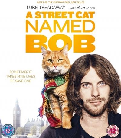Уличный кот по имени боб скачать книги в fb2