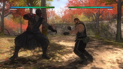 Dead or Alive 5 Last Round 2015 PC by xatab